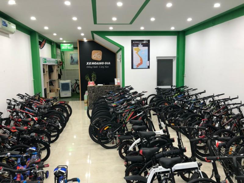 xe-hang-gia-vung-tau-3